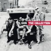 covers/106/the_collection_gun.jpg