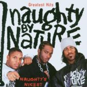 covers/131/greatest_hits_naug_naughty.jpg