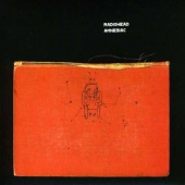 covers/16/amnesiac_dvd_312766.jpg