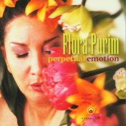 covers/161/perpetual_emotion_purim.jpg