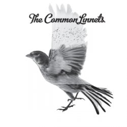 covers/173/common_linnets_common.jpg