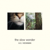 covers/194/the_slow_wonder_344074.jpg