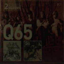 covers/213/revolutionrevival_768164.jpg