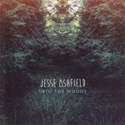 covers/229/into_the_woods_761120.jpg