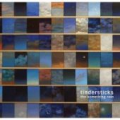 covers/259/something_rain_tindersticks.jpg