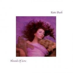 covers/260/hounds_of_love_180gr_786432.jpg