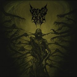 covers/261/passages_into_deformity_786528.jpg