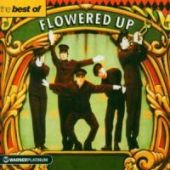 covers/28/best_oftheplatinum_collectio_flowered.jpg