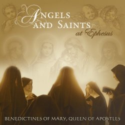covers/297/angels_and_saints_at_799902.jpg