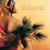 covers/298/acoustic_soul_42273.jpg