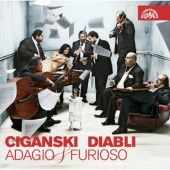 covers/298/adagio_furioso_359199.jpg