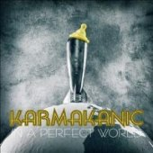 covers/307/in_a_perfect_worldspedice_karmakanic.jpg