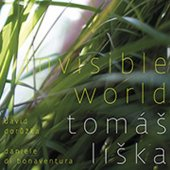 covers/311/invisible_world.jpg