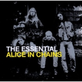 covers/318/essential_alice_in_chains_399317.jpg