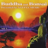 covers/325/buddha_bonsai_vol_1_sha.jpg