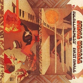 covers/334/fulfillingness_first_47464.jpg