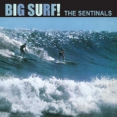 covers/342/big_surf_12in_874231.jpg