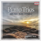 covers/346/piano_trios_871694.jpg