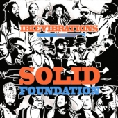 covers/350/solid_foundation_868802.jpg