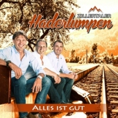 covers/353/alles_ist_gut_866792.jpg