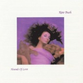 covers/361/hounds_of_love_bus.jpg
