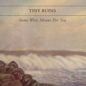 covers/365/some_were_meant_for_sea_793517.jpg