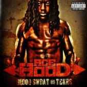 covers/376/blood_sweat_and_tears_807994.jpg