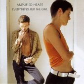 covers/379/amplified_heart_everything.jpg