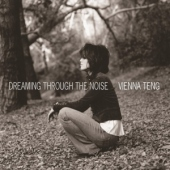 covers/381/dreaming_through_the_nois_809934.jpg