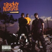 covers/381/naughty_by_nature_nau.jpg