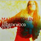 covers/383/malfunkshun_dvd_810814.jpg