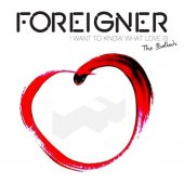 covers/396/i_want_to_know_what_love_is_foreigner.jpg