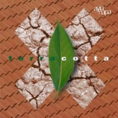 covers/397/terracotta_820455.jpg