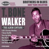 covers/401/brothers_of_blues_823296.jpg