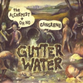 covers/408/gutter_water_376376.jpg