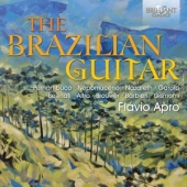 covers/417/brazilian_guitar_837193.jpg