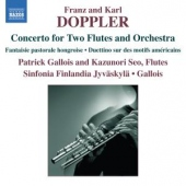 covers/422/concerto_in_d_minor_840105.jpg