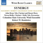 covers/422/synergymusic_for_wind_ba_839659.jpg