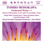 covers/426/orchestral_works_1_842024.jpg