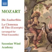 covers/428/arrangements_for_wind_ens_844306.jpg