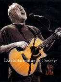 covers/43/david_gilmour_in_concert.jpg