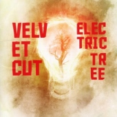 covers/480/electric_tree_940397.jpg