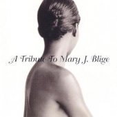 covers/491/tribute_to_mary_j_blige_976786.jpg