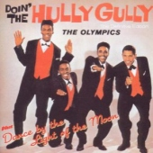 covers/497/doin_the_hully_gully_1000135.jpg