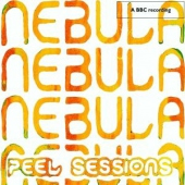 covers/500/bbcpeel_sessions_1009923.jpg