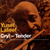 covers/500/cry_tender_lost_in_1008519.jpg