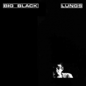 covers/506/lungs_1034330.jpg