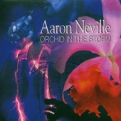 covers/506/orchid_in_the_storm_1041564.jpg
