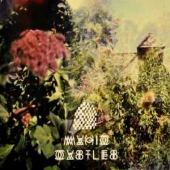 covers/509/magic_castles_1040277.jpg