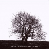 covers/522/among_the_rumours_and_1071126.jpg